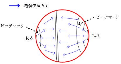 マクロ破面観察(亀裂伝播方向:模式図)