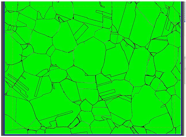 SUS304鋼のオーステナイト結晶粒径測定用の画像処理像